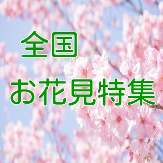 高井一 (アナウンサー)の画像 p1_3