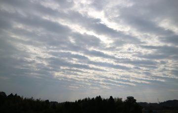 市川海老蔵の地震予言